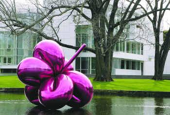 balloonflower.jpg