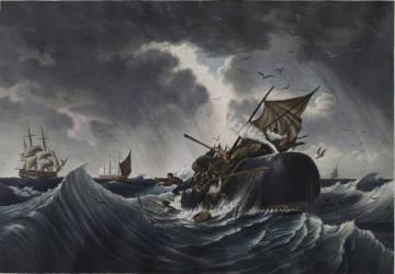 tv-pbs_whaling10_634341gm-a