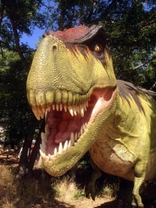 Dinosaur watching, anyone? Photo: Heard Natural Science Museum