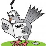 pigeon-cartoon-lrg.en