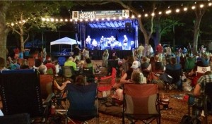 Listen to music under the stars at Safari Nights. Photo: Dallas Zoo