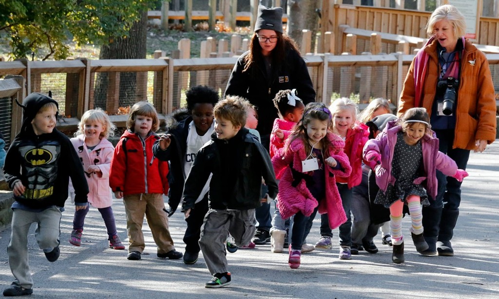 It's almost Christmas! Let them run off that extra energy at a Snowfari Winter Camp. Photo: Dallas Zoo.