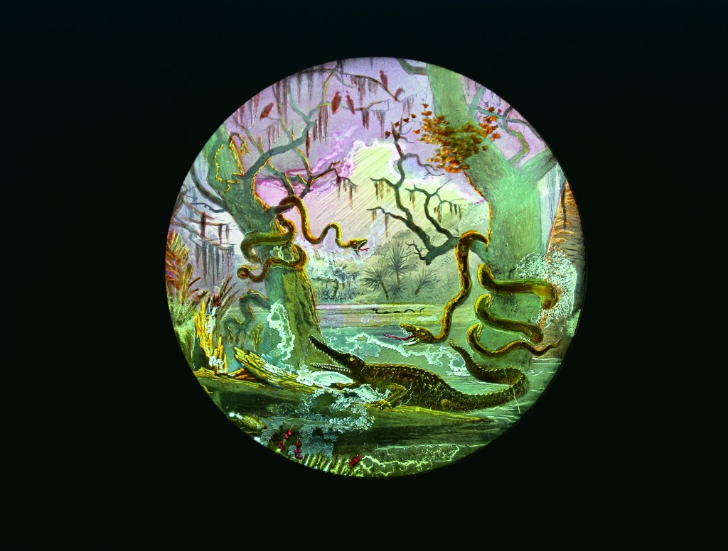 Where Hideous Things Slither and Climb, hand-colored magic lantern slide, Knights of Pythias, 1890­1900 Webb Collection