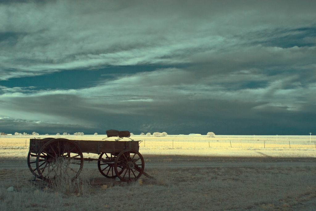 Old Wagon by Nadine Levin