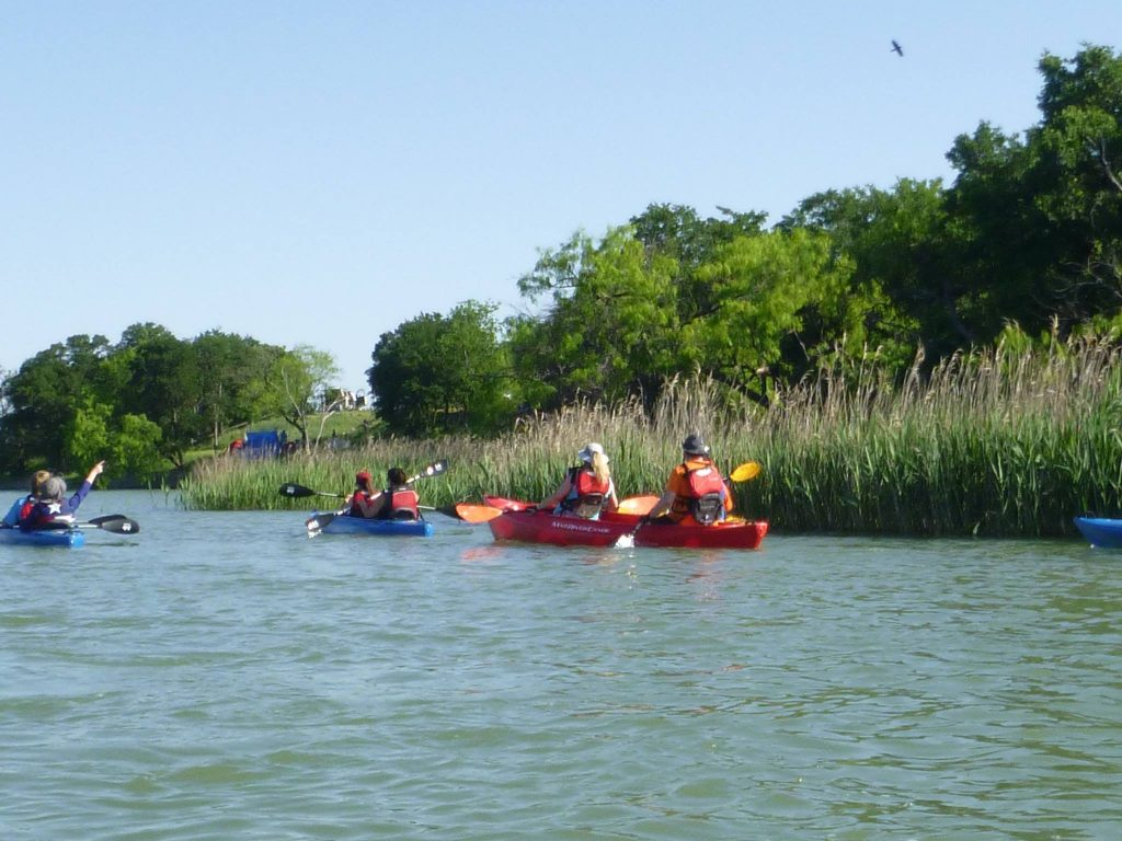 Look for the early birds this Saturday morning from a kayak. Photo: Dogwood Canyon Audubon Center at Cedar Hill