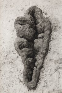 "Ana Mendieta's ""Untitled (Maroya)."" Photo: Nasher"