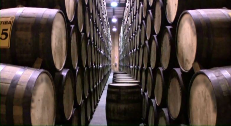 Tequila exports have sky rocketed. Mexico Exports about 300 million liters per year.