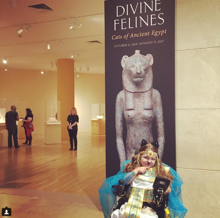 Looking for something with a little CATitude? Check out Divine Felines. Photo: Dallas Museum of Art