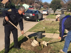 FWPD working with Comunidad 27 to plant trees in the Northside neighborhood. Photo: Arnoldo Hurtado