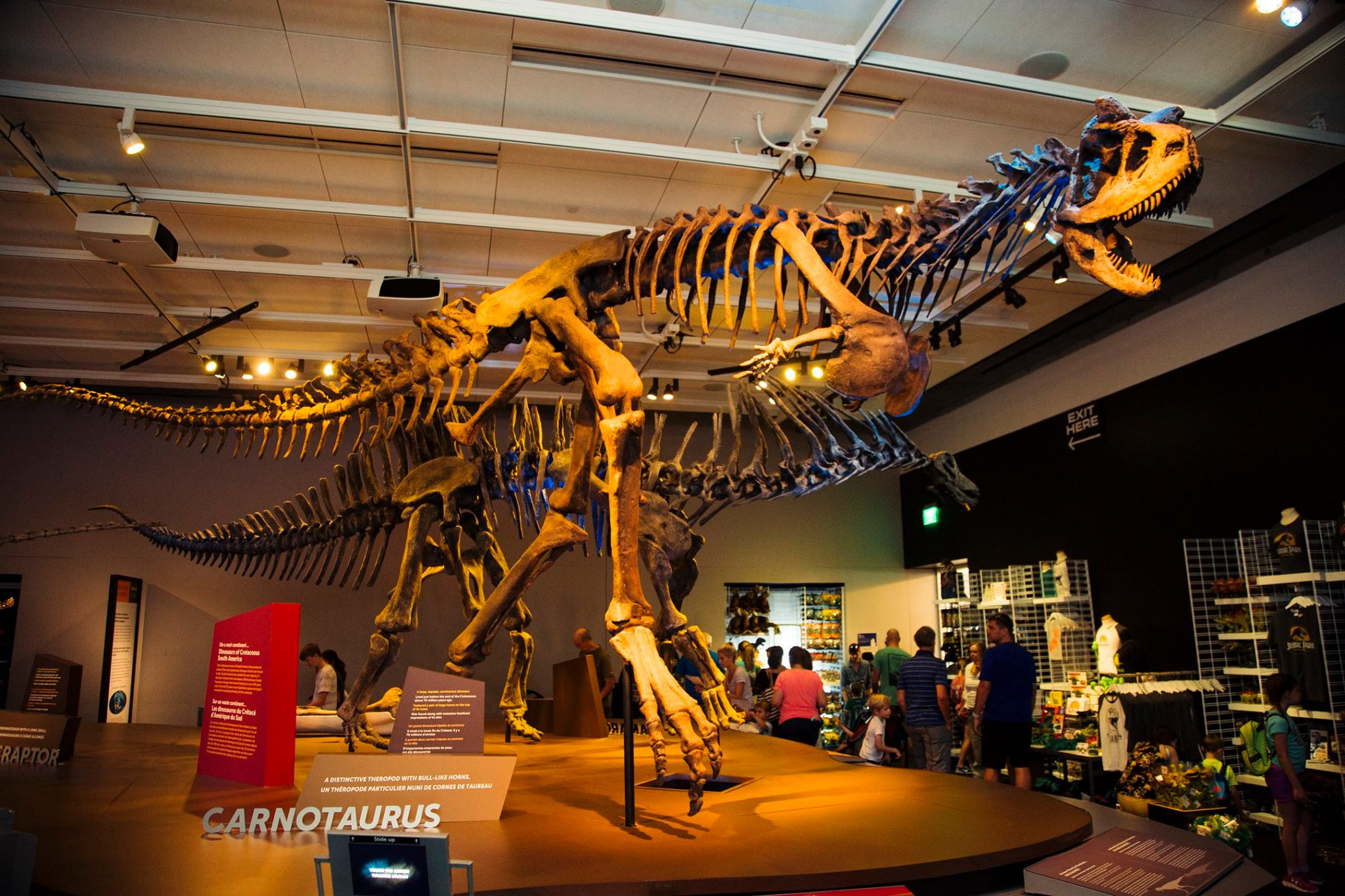 Photo; Perot Museum of Nature and Science