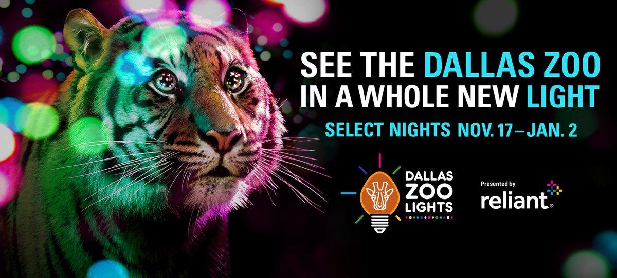Dallas Zoo Lights Art Seek Arts Music Culture For North Texas