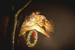 I'm dreaming of a T-Rex Christmas. (Photo: The Heard Natural Science Museum and Wildlife Sanctuary)