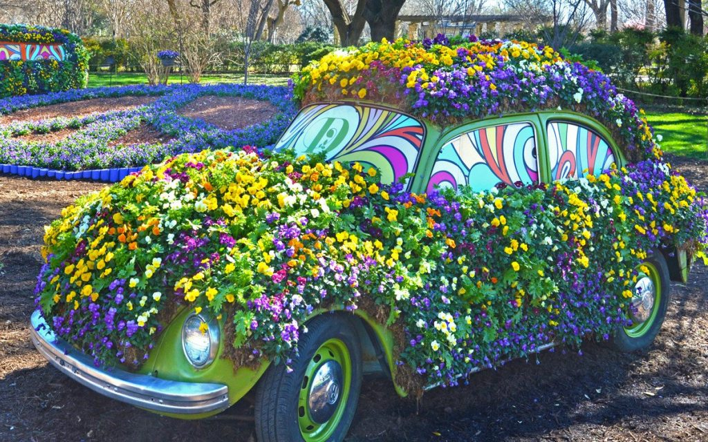 Come experience love, peace, and flower power at the Dallas Arboretum. Photo: Dallas Arboretum