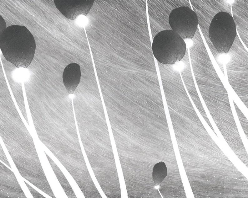 """""""Aerophages"""" - Jorge Alegría, 2016"""