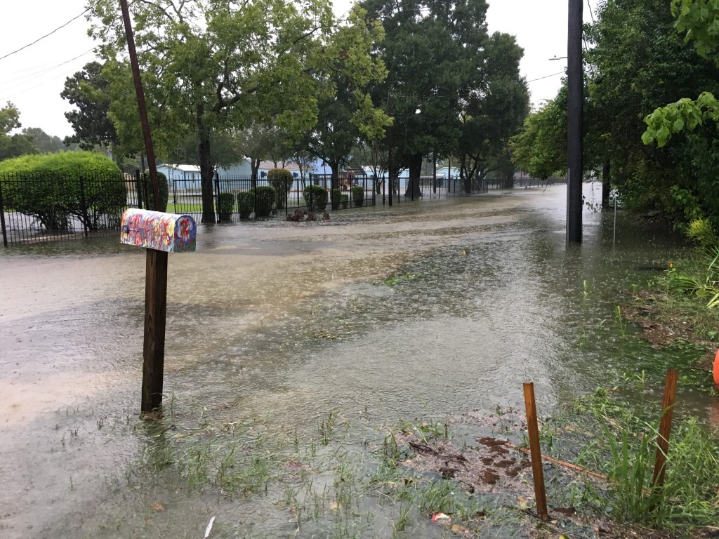 Photo of Glasstire reporter Ariane Roesch's street flooded after Harvey. Photo: Ariane Roesch