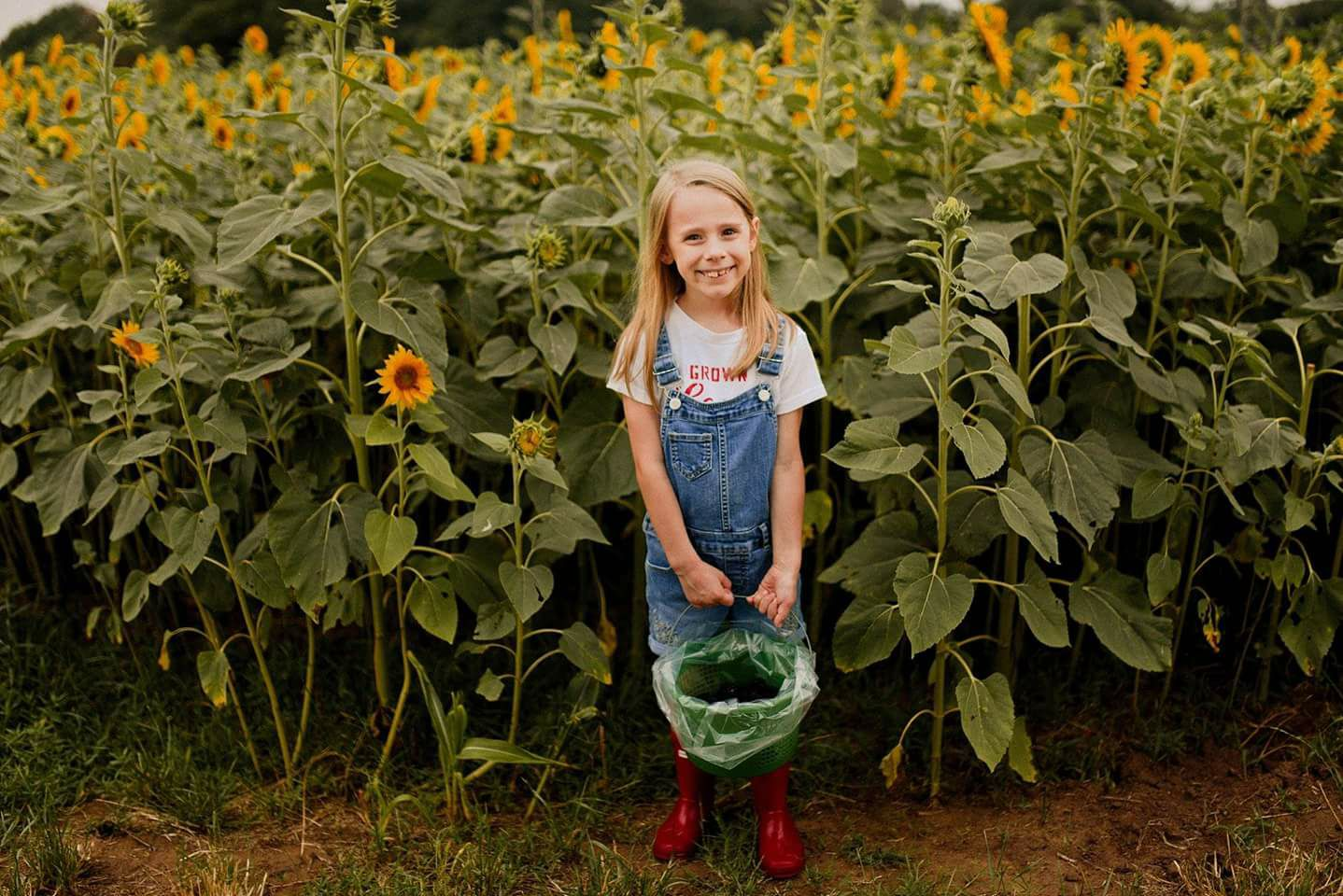 Photo: Woodsy Wonders Photography/ Wild Berry Farm