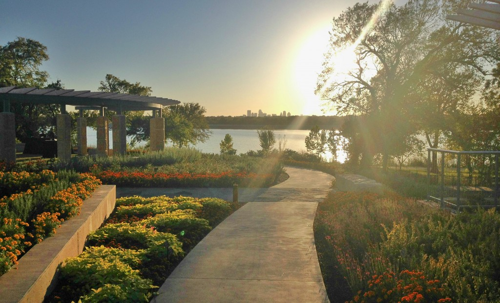View of Dallas skyline from Arboretum's new pavilion. Photo: Jerome Weeks