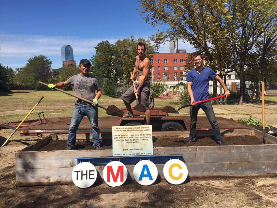 The MAC in Dallas has teamed up with h Promise of Peace Gardens (POP) and art collaborative Tierra Firme to build a garden. Photo: The MAC