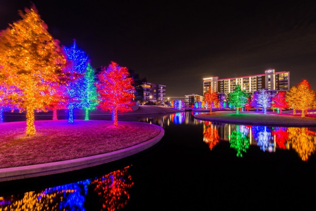 colorful trees light up water at night time.