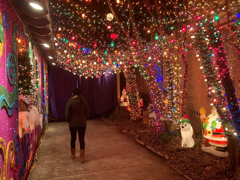 Holiday lights are hung in a driveway to create a tunnel.